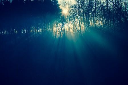 Sole e nebbia, luce ed ombra, alba di un nuovo giorno